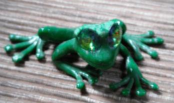 bright-eyed-frog
