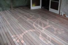 deck-lizard