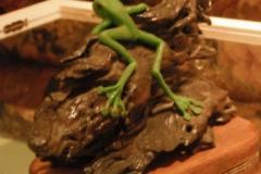 fimo-frog-on-a-log