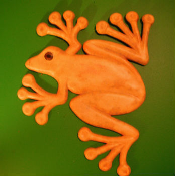 plaster-wall-frog